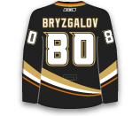 photo Bryzgalov-Ily.png