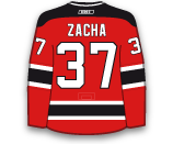 photo Zacha-Pavel.png